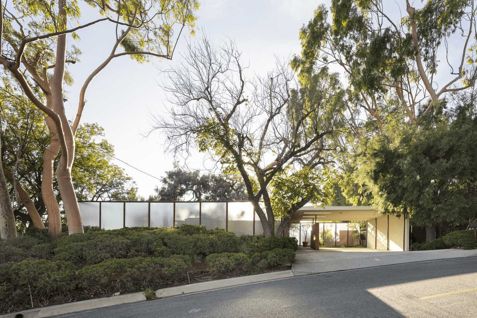 this-is-the-Case-Study-16-house-tucked-away-in-Bel-Air-area-of-LA-a-view-of-outside-the-home-surrounded-by-big-trees