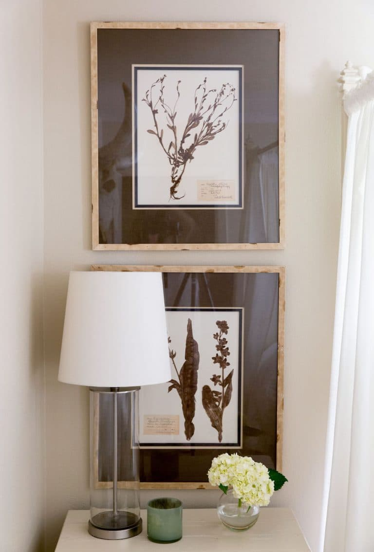 this is an old botanical prints and country decor