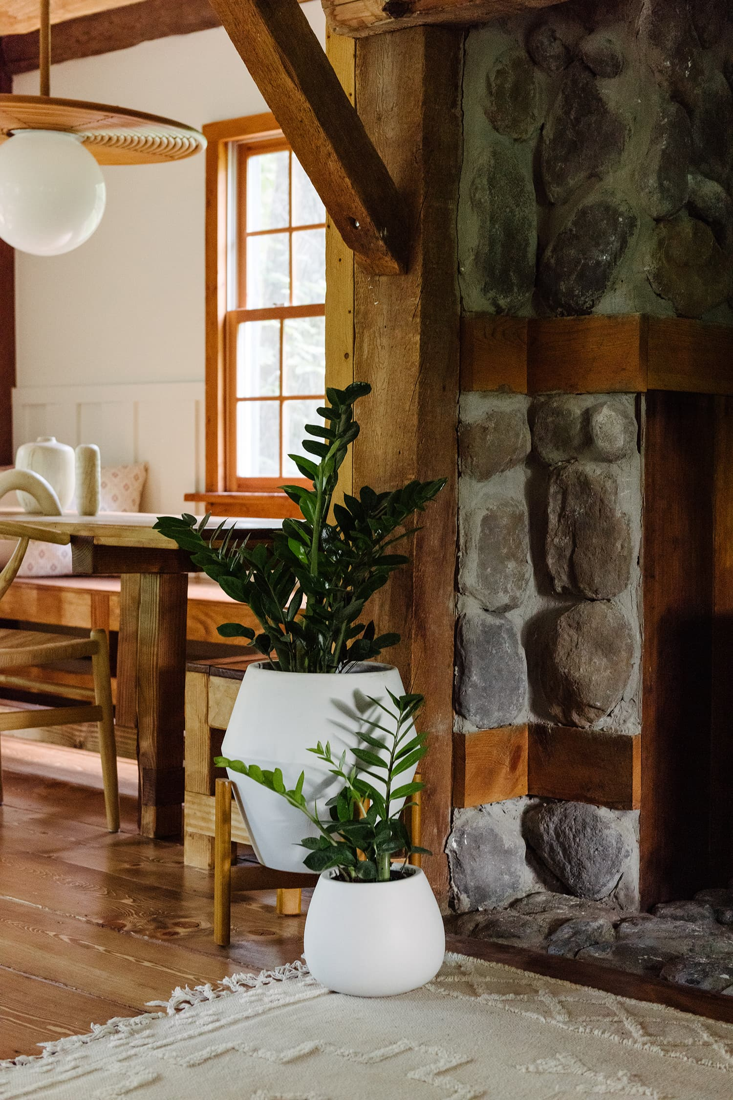 this is the hunter house with plants and textures inspired by biophilia