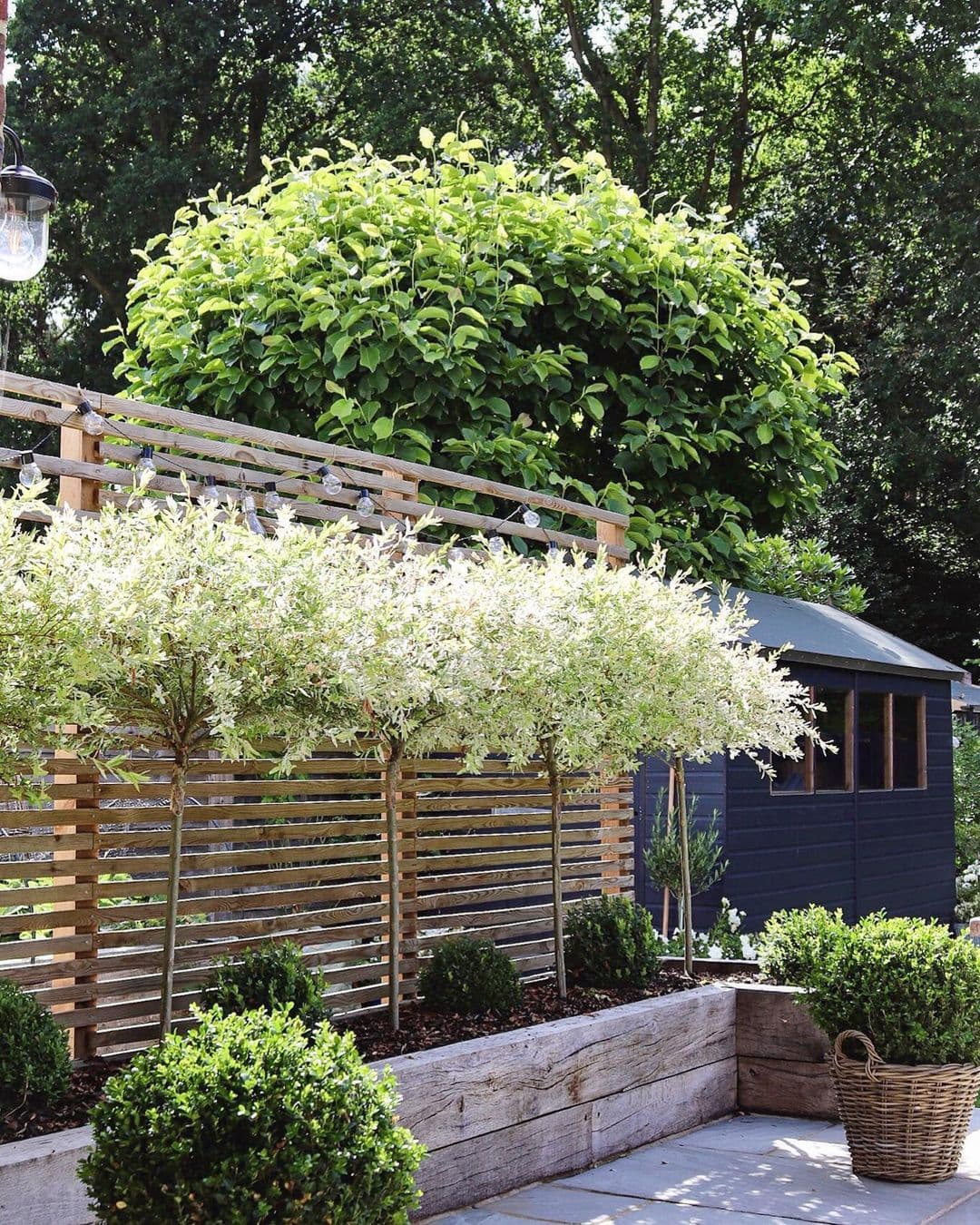 this is a garden by feather and faff with a black shed for storage