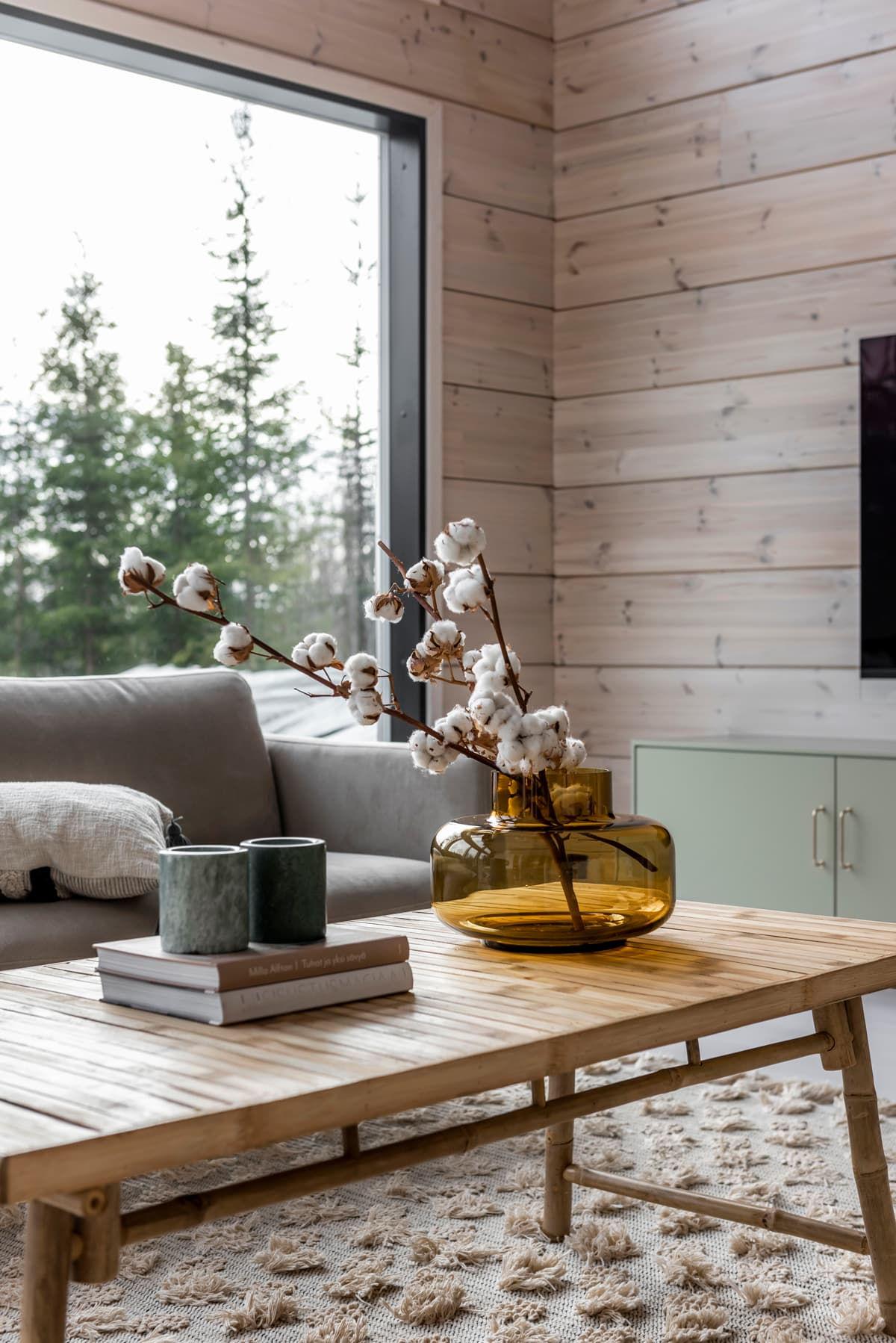 this is a nature inspired living room with a minimal coffee table